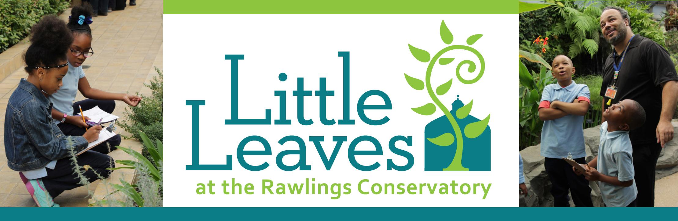 little-leaves-header