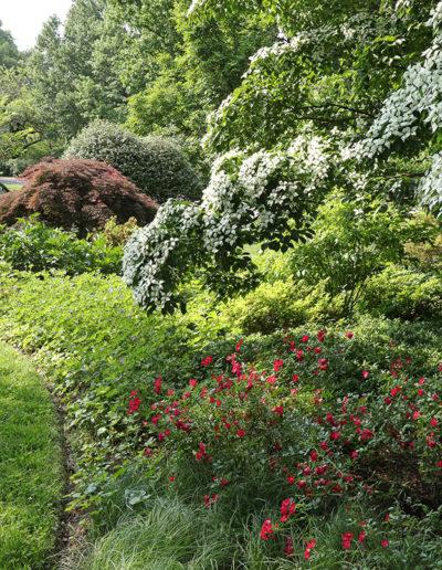 Garden5a